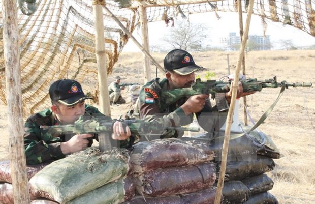 Defence officer observes military exercise in India hinh anh 1