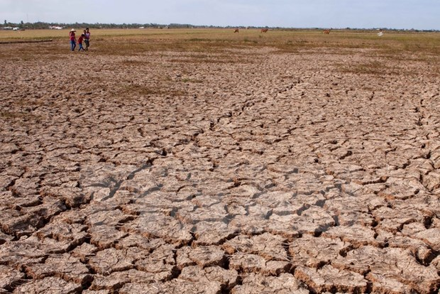 Binh Thuan province dries up in severe drought hinh anh 1