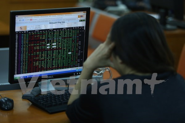 Vinalines to make public offering in first quarter hinh anh 1