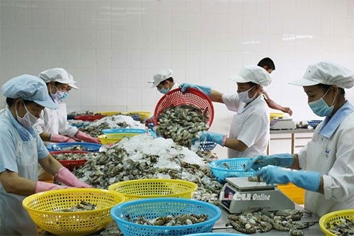 Duties on Vietnamese shrimp sent to US increased hinh anh 1