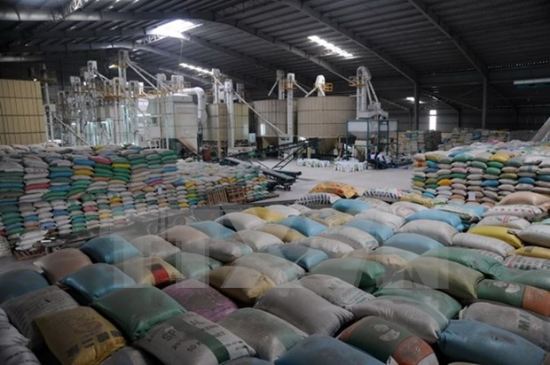 Rice exports in February rise two-fold from last year hinh anh 1