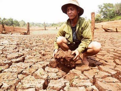 Central Highlands struggle with drought hinh anh 1