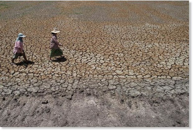 Thailand faces extreme drought hinh anh 1