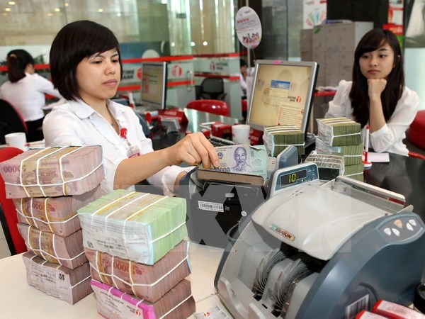 Over 14 percent of State budget revenue earmarked for debt payment hinh anh 1