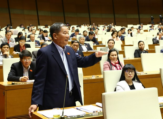 Lawmakers appraise pharmaceutical, import-export duties regulations hinh anh 1