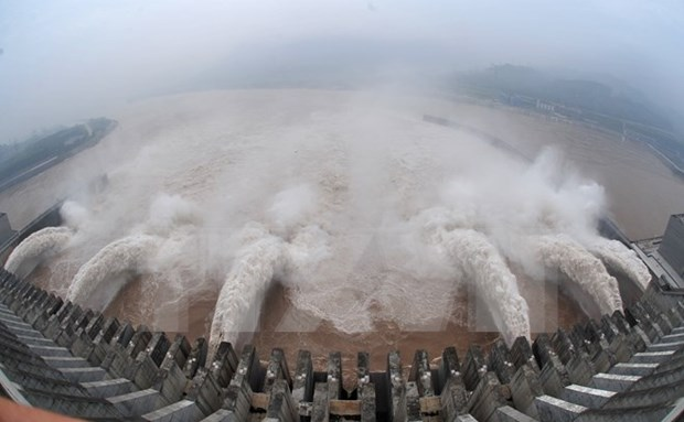 Laos helps Vietnam deal with drought, salt intrusion hinh anh 1