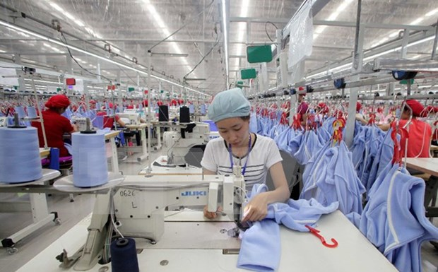 Statistics authority conducts survey on business hinh anh 1