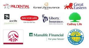 Vietnamese insurance firms target niche market hinh anh 1