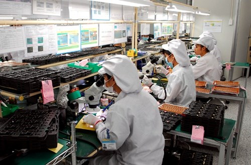 Labour employment policies to be reviewed hinh anh 1