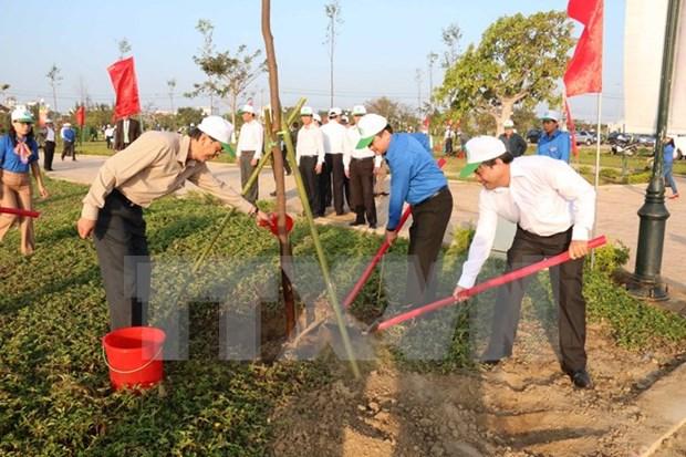 HCM City: 480 billion VND spent on greening hinh anh 1