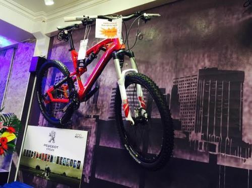 Bianchi, Dahon Folding bicycles hit Vietnamese market hinh anh 1