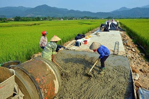 Vietnam hosts workshop on gender integration in rural transport hinh anh 1
