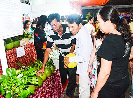 Agro-fisheries festival opens in Ba Ria – Vung Tau hinh anh 1