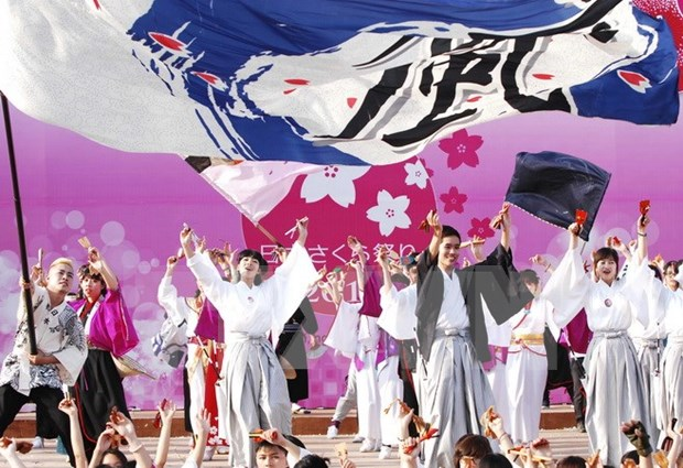 First Japanese cherry blossom festival held in Da Nang hinh anh 1