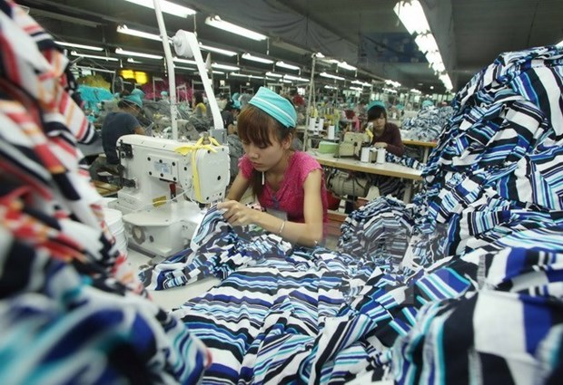 Vietnam's garment industry training funded hinh anh 1