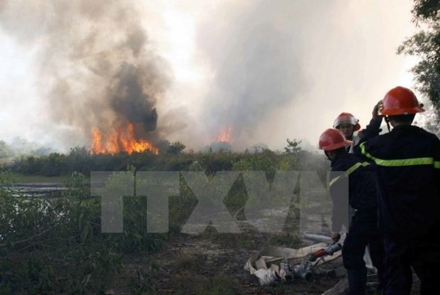 Dong Thap on full alert for forest fires hinh anh 1