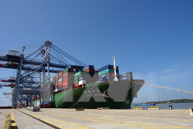Cai Mep int'l port welcomes large container ship hinh anh 1