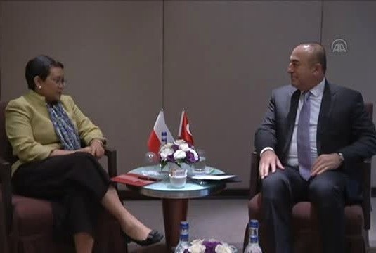 Indonesia, Turkey enhance cooperation hinh anh 1