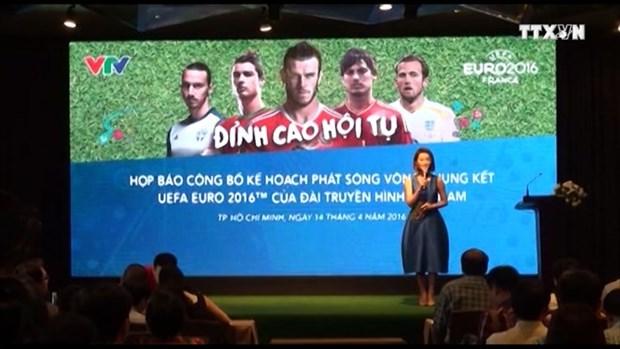 VTV to air all football matches at EURO 2016 hinh anh 1