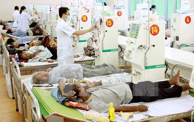 Vietnam supports Laos' military hospital with telemedicine system hinh anh 1