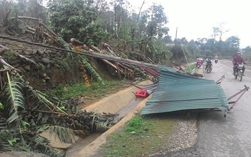 Hailstorm wrecks havoc in many localities hinh anh 1