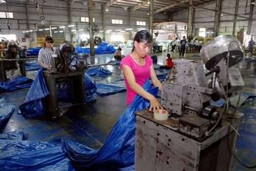 Vietnam's plastic sector eyes alternatives hinh anh 1