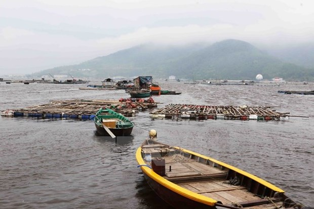 Hotlines set up to help fishermen hinh anh 1