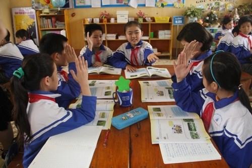 HCM City primary schools to use Escuela Nueva hinh anh 1