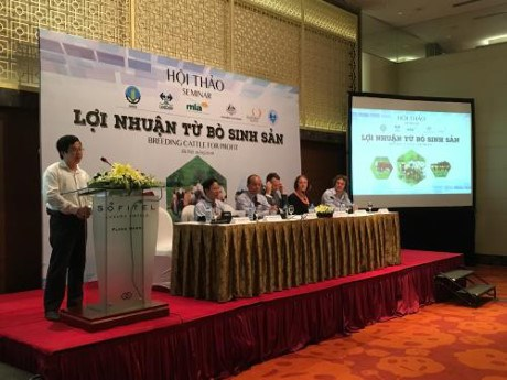 Vietnam eyes sustainable growth of cattle industry hinh anh 1