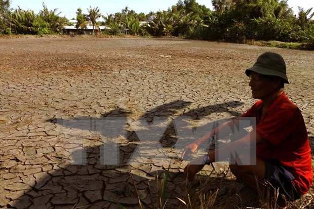 Ca Mau supports farmers in drought-hit areas hinh anh 1