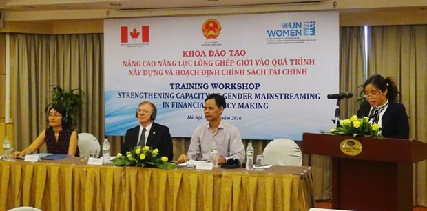 Workshop promotes women capacity in financial policy making hinh anh 1