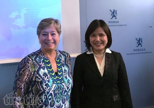Vietnam, Norway look to boost cooperation hinh anh 1