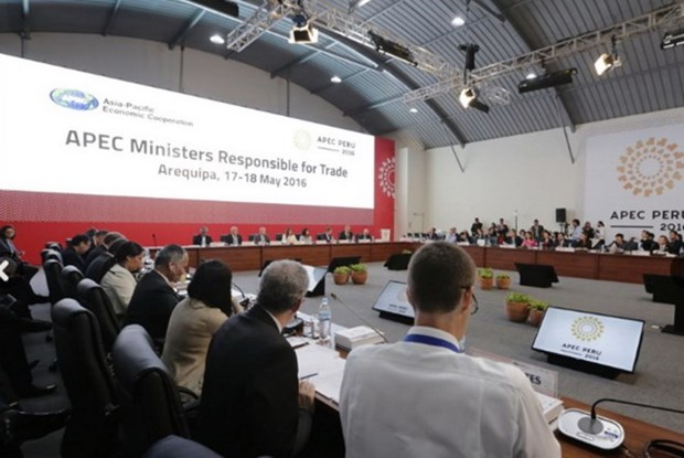APEC trade ministers meet in Peru hinh anh 1