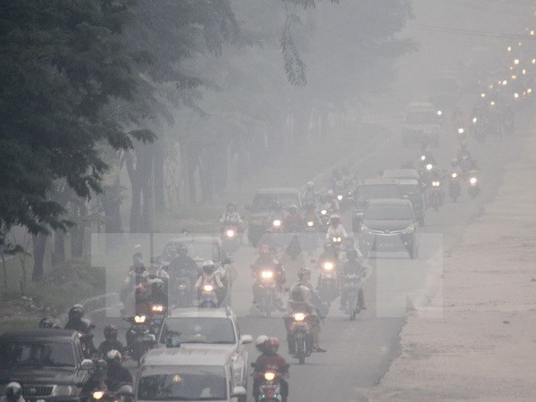 Malaysia makes substantial progress in cutting CO2 emissions hinh anh 1