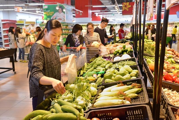 Future of domestic retail sector amid foreign acquisitions hinh anh 1