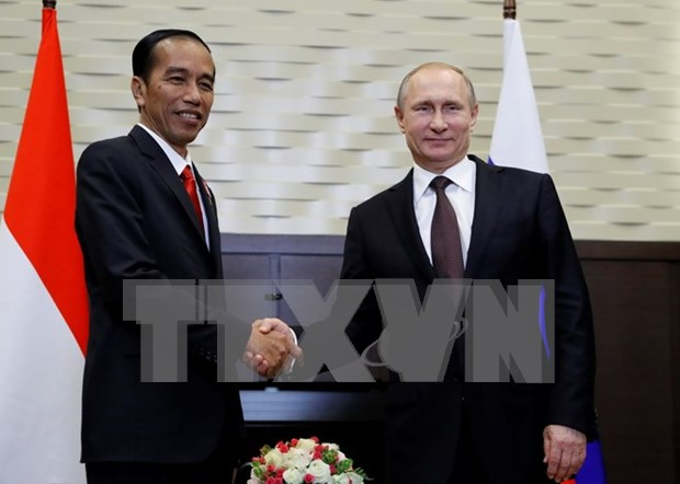 Indonesia, Russia boost bilateral cooperation hinh anh 1