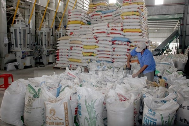 Rice exports in Q2 fall hinh anh 1