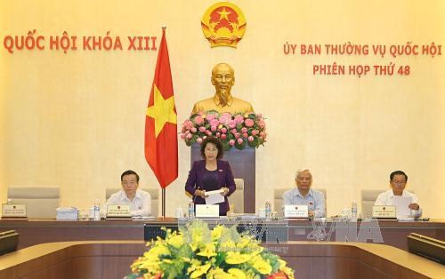 New countryside programme, sci-tech development under review hinh anh 1