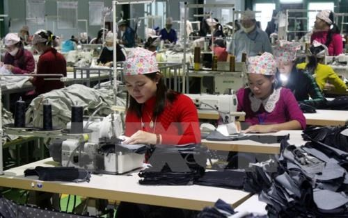 Vietnam's workforce to reach over 54.4 million in Q2 hinh anh 1