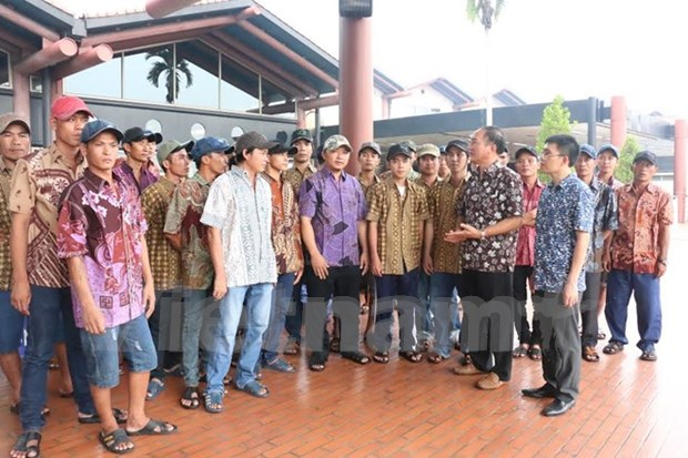 Another 33 fishermen repatriated from Indonesia hinh anh 1