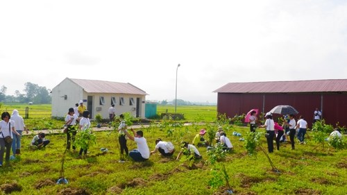 Activities staged for a greener Vietnam hinh anh 1