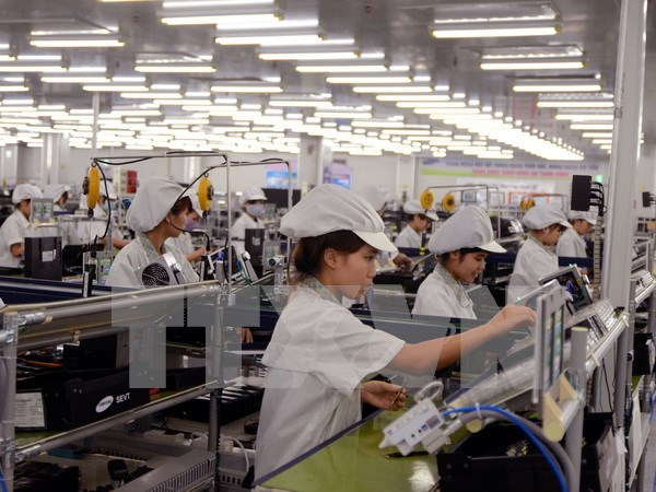 Opportunities, challenges lie ahead under EU-Vietnam FTA hinh anh 1