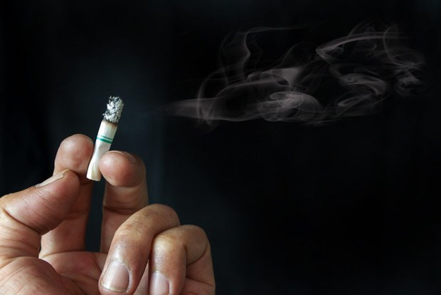 Tobacco use among Indonesian youths on alert hinh anh 1
