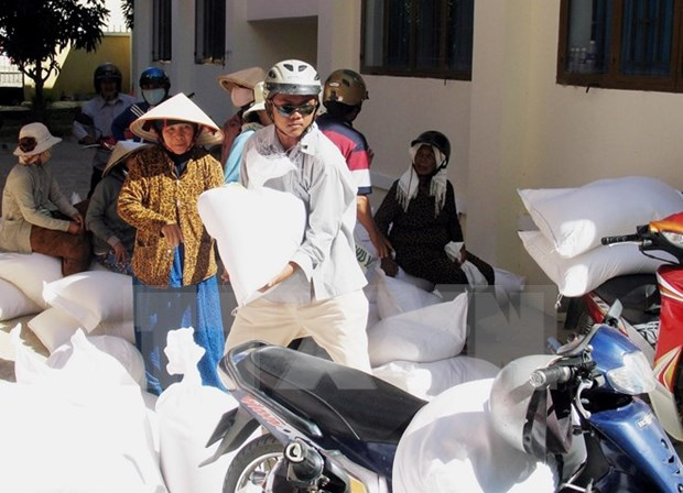 More rice distributed to drought victims in Ninh Thuan province hinh anh 1