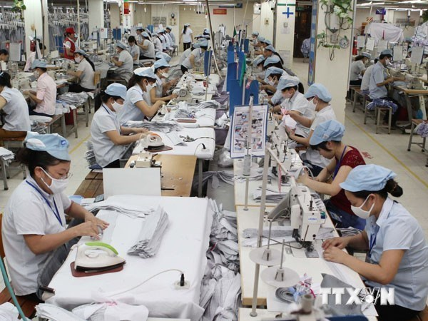 Businesses face challenges in TPP hinh anh 1