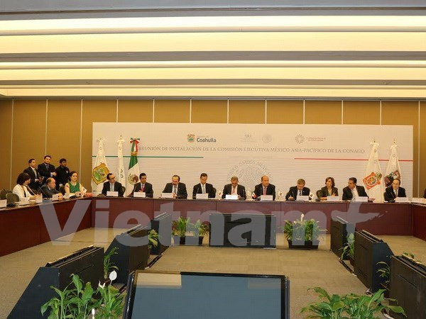 Mexico-Asia Pacific committee set up hinh anh 1