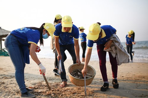 Biggest ever beach cleanup launched hinh anh 1