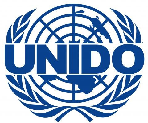 UNIDO official honoured for contributions to Vietnam's agriculture hinh anh 1