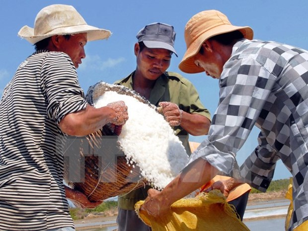 Ben Tre Province asks government to help salt farmers hinh anh 1