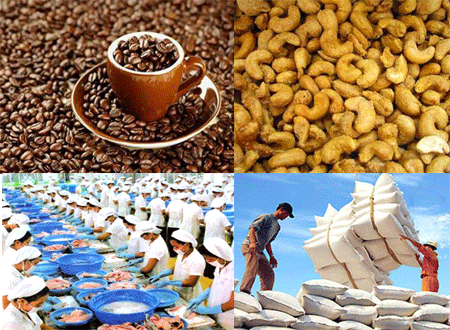 Agri-forestry-fishery exports fetch 15 billion USD hinh anh 1